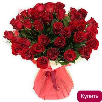 Заказ каталога цветов бесплатно живые цветы в горшках для оформления бассейна