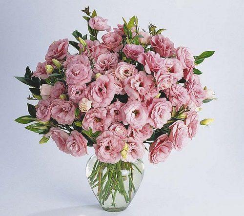 фото эустома цветы